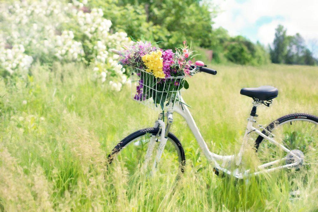 Natural Solutions for Mild Seasonal Allergies